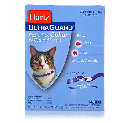 HARTZ - Flea & Tick Collar for Cats and Kittens Purple - 13 Inches