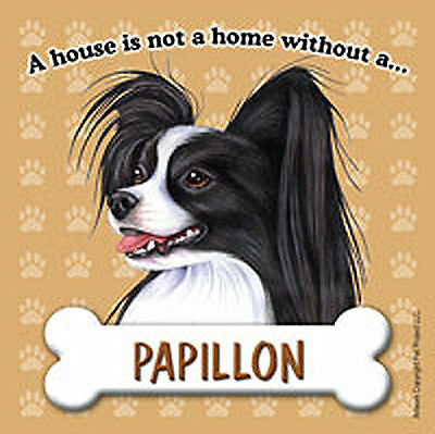 Papillon Magnet - House Is Not A Home Blk/Wht