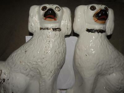 """Pair Antique Staffordshire Dogs Spaniels Figurines 12.50"""" Tall"""