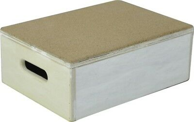 Electrovision Cork Top Step Box 6 inch with Rubber Base VR239A