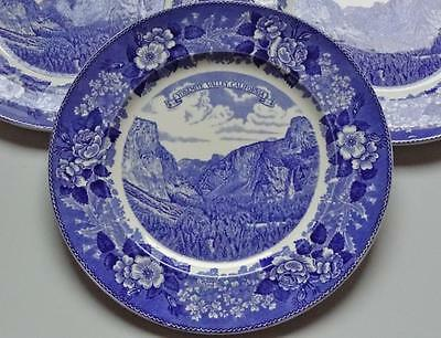 ANTIQUE FLOW BLUE TRANSFERWARE ADAMS YOSEMITE PARK & CURRY Co SOUVENIR PLATE