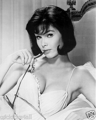Yvonne Craig / Batgirl 8 x 10 / 8x10 GLOSSY Photo Picture