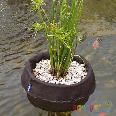 Laguna Pond Floating Plant Baskets Small 25cm, Medium 35cm or Set of Both