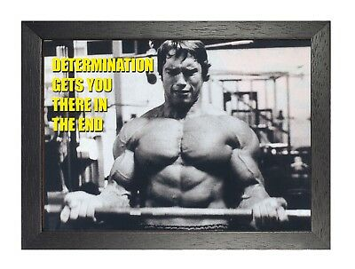 Determination Arnold Schwarzenegger Quote Motivation Arni Black & White Poster