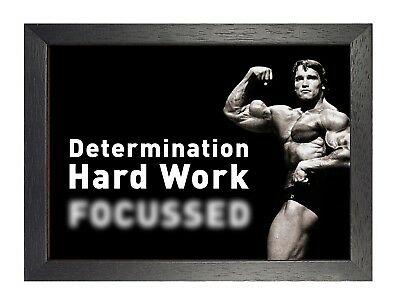 Determination Hard Work Poster Focussed Arnold Schwarzenegger Quote Motivation