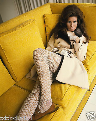 Raquel Welch 8 x 10 GLOSSY Photo Picture IMAGE #9