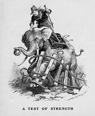 Theodore Roosevelt Riding The Republican Elephant Congress Opposition Railroad