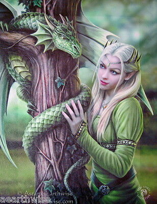KINDRED SPIRITS CANVAS ART PRINT by ANNE STOKES - Wicca Witch Pagan Goth DRAGON