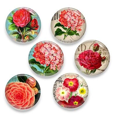 6pcs Blossom Flower Zoom Glass Round Cameo Cabochon 25mm - Group A
