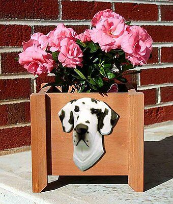 Great Dane Planter Flower Pot Harlequin