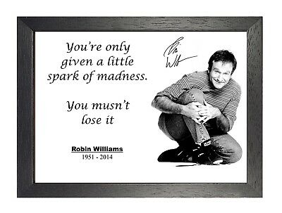 Robin Williams Inspirational Quote Spark Of Madness Picture Motivation Poster