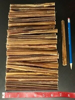 12 pcs 5 to 6 inch Beef Bully Jr STEER Sticks Free Range Cattle Naturals THIN