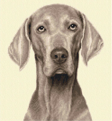 WEIMARANER dog, puppy - complete counted cross stitch kit