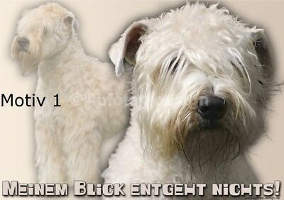 IRISH SOFT-COATED WHEATEN TERRIER Hundewarnschild Hundeschild laminiert