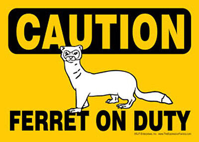 CAUTION Ferret On Duty 5x7 Laminated Sign / Magnet USA Made