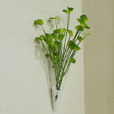 Cone Glass Hanging Plant Terrarium Bottle Flower Vase Pot Home Wall Decor