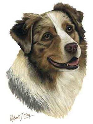 Australian Shepherd Dog Robert May Art Greeting Card Set of 6