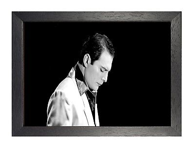 Freddie Mercury 15 Photo Queen Rock Band Legend Picture Vintage Music Poster