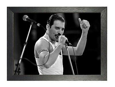 Freddie Mercury 20 Photo Queen Rock Band Legend Picture Vintage Music Poster