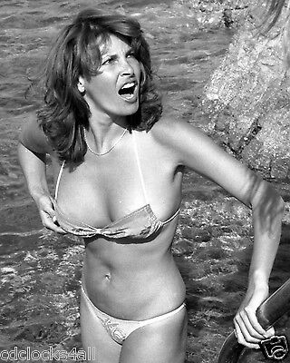 Raquel Welch 8 x 10 / 8x10 GLOSSY Photo Picture IMAGE #10