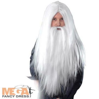 Long White Wizard Wig + Beard Fancy Dress Costume Mens Santa Halloween Accessory
