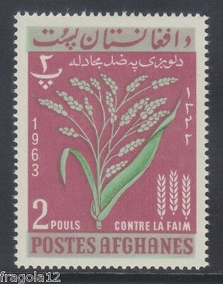Afghanistan 1963 - Campagna Contro La Fame - P. 2 - Mnh