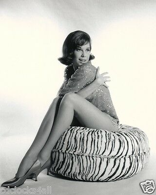 Mary Tyler Moore 8 x 10 / 8x10 GLOSSY Photo Picture