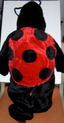 Halloween Outfit For Toddler-Very Detailed- Cute Lady Bug*