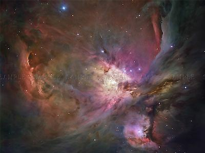 Hubble Space Telescope View Of The Orion Nebula Poster Print Art 333Pya