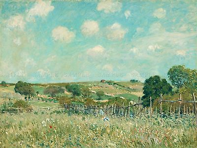 Alfred Sisley French Meadow Old Art Painting Poster Print Bb4798A