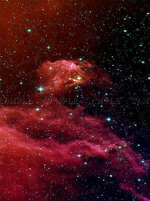Space Nebula Star Gas Orion Cloud Nursery Cosmic Large Poster Art Print Bb3259A