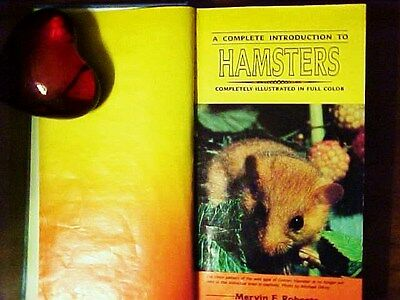 """""""A Complete Introduction To Hamsters"""" 1987"""
