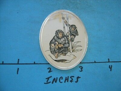 1.3 Oz Chimpanzee Colored Oval Wildlife Of World Collection Silver Rare