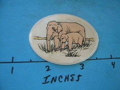1.3 Oz Asian Elephant Colored Oval Wildlife Of World Collection Silver Rare