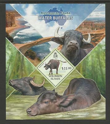 SOLOMON ISLANDS 2013 Australian Animals BUFFALOS Souv Sheet Single Value MNH