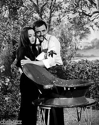 The Addams Family - Tv Show Photo #x76