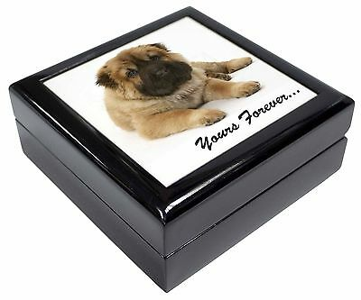 Shar-Pei Puppy 'Yours Forever' Picture Jewellery Box Christmas Gift, AD-SH3JB