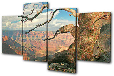 Landscapes Grand Canyon Tree  MULTI CANVAS WALL ART Picture Print VA