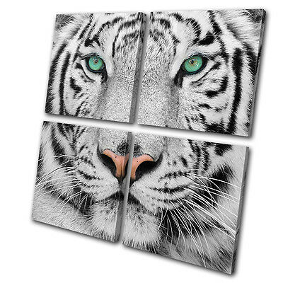 Animals Siberian Tiger Eye MULTI CANVAS WALL ART Picture Print VA