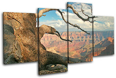 Grand Canyon Tree  Landscapes MULTI CANVAS WALL ART Picture Print VA