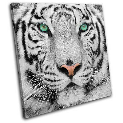 Siberian Tiger Eye Animals SINGLE CANVAS WALL ART Picture Print VA