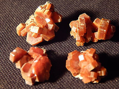 LOT of FOUR Small Vanadinite Crystal Clusters Found in Morocco 31.9