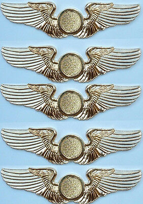 Special Order FIVE (5) Shiny Golden Finish Deluxe Private Pilot Wings