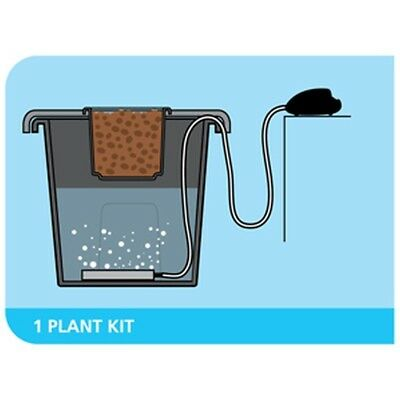 PLANT!T aeros 4  Aerated Deep Water Culture DWC System