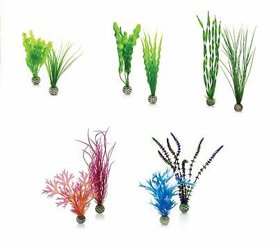 Reef One Biorb Easy Plant 2 Pack Fish Tank Aquarium Decoration Biube Life Halo