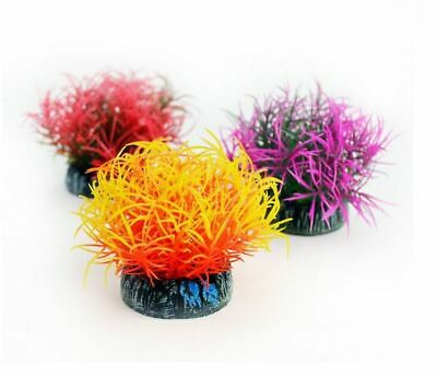Oase Biorb Colour Ball Plant Fish Tank Aquarium Decoration Biube Life Halo