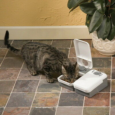 Pet Safe Eatwell 2 Meal Timed Pet Feeder