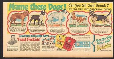 1949 - FRISKIES Dog Food ad - Name These Dogs? - Bloodhound, Borzoi, Cocker