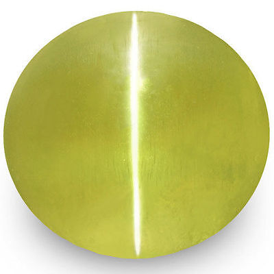 1.61-Carat Deep Greenish Yellow Ceylonese Chrysoberyl Cat's Eye (IGI-Certified)
