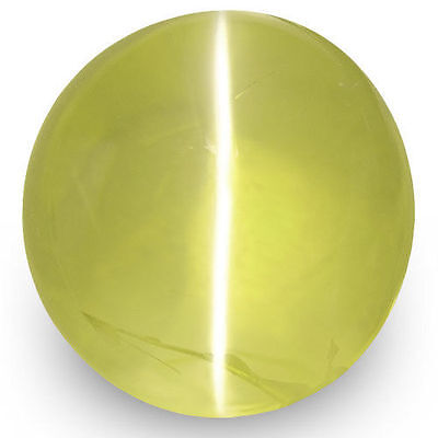 1.82-Carat Lively Green Yellow Chrysoberyl Cat's Eye from Ceylon (IGI-Certified)